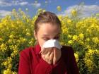 Pollenfilter-L-ftungsanlage-allergy-1738191_1920